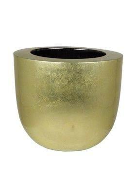 6BGOC3020 Goldleaf