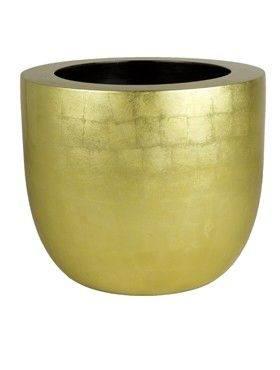 6BGOC4530 Goldleaf