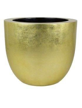 6BGOC6050 Goldleaf
