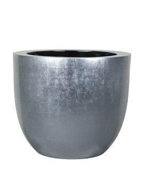 6BZIC6050 Silverleaf