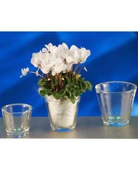 6GLZVCC010 Glass-ware