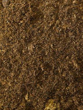 6HKOBALE10 Potting soil Nieuwkoop Production
