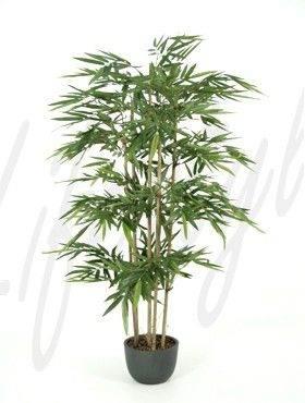 8BAMBTU25 Bamboo