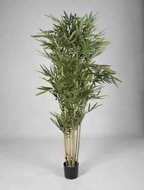 8BAMBTU35 Bamboo