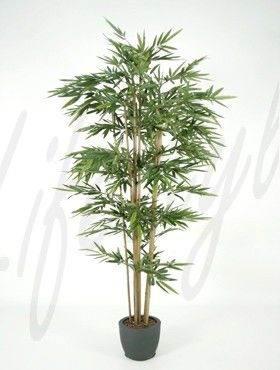 8BAMBTU40 Bamboo