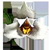 Корзина (ячейка 2,5х2,5 см) 6х6х3 (15х15х8 см) с подвесом