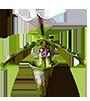 Подвесы для ванд - магазин Орхидей