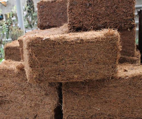 Кокосовое волокно (прессованный брикет 27х27х13 см)