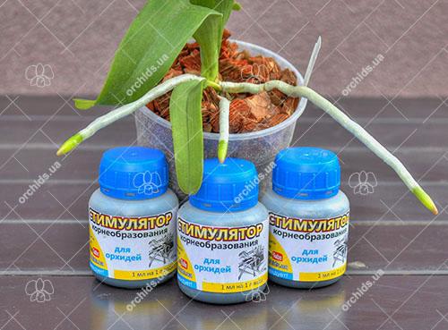 Стимулятор корнеобразования для орхидей