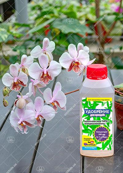 Удобрение для орхидей комплексное NPK + микроэлементы