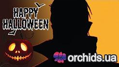 Рассказ об орхидее рода Dracula. Поздравление с Halloween от orchids.ua!